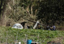 Se desploma aeronave militar al intentar despegar en El Lencero
